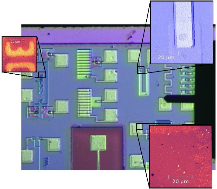 TT AFM Video Optical Microscope shows test structure